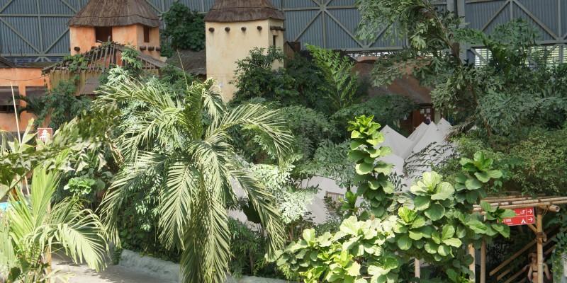Tropical_Island